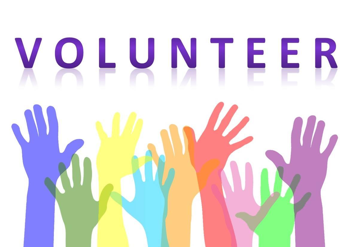 Oferty wolontariatu w Czechach, Danii i Francji